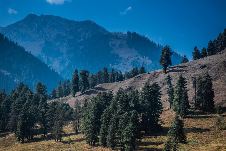 Nashik To Kashmir Tour Package From Nashik